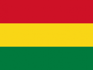 Bolivia Area Code