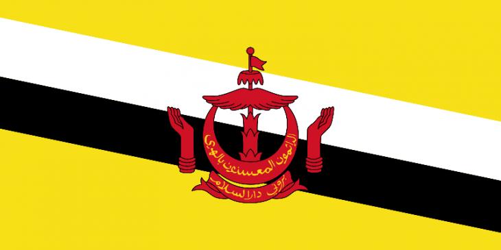 Brunei Area Code