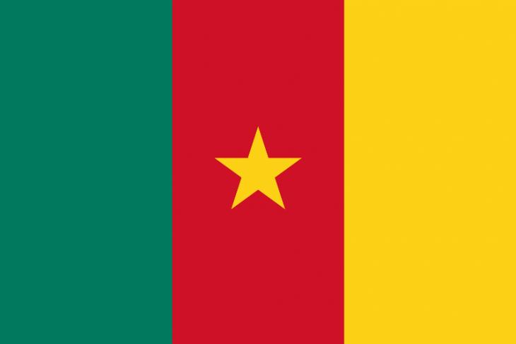 Cameroon Area Code