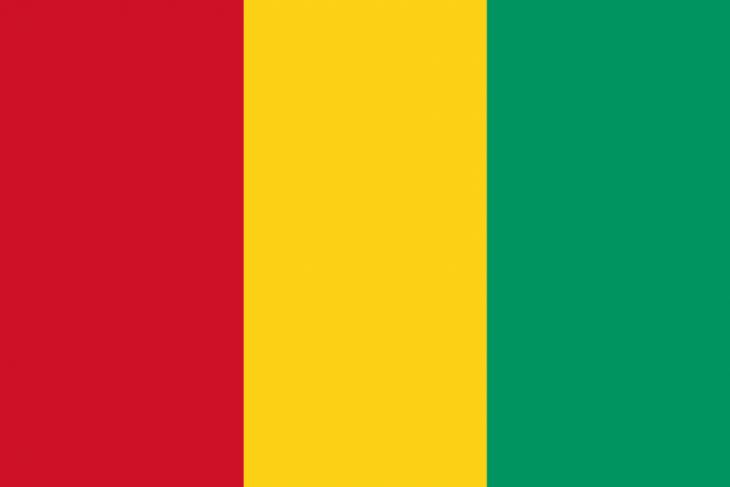 Guinea Area Code