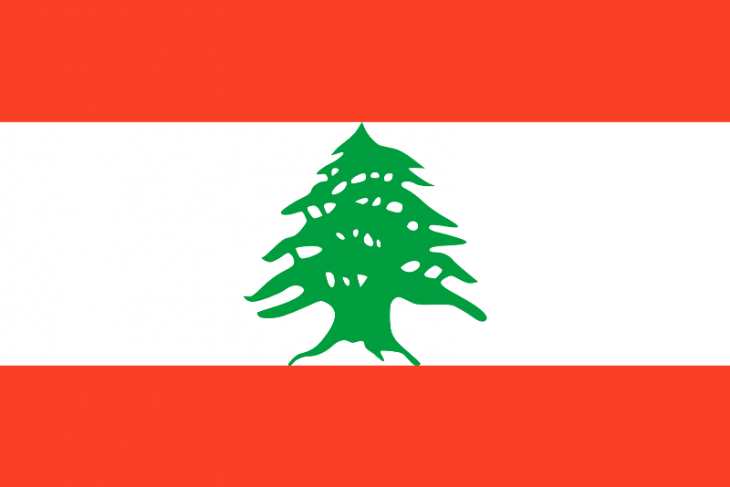Lebanon Area Code