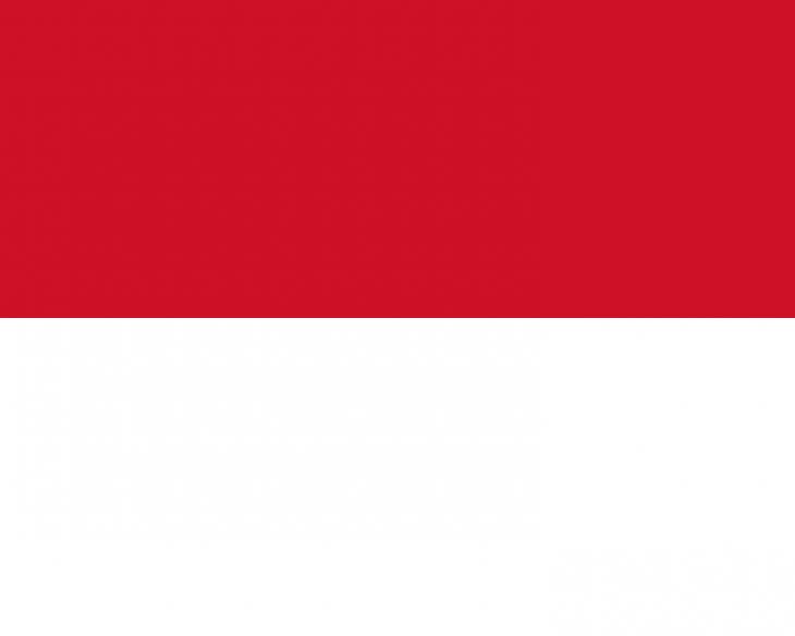 Monaco Area Code